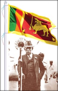 DSS and lion flag