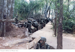 Troops in defence in Wanni Area
