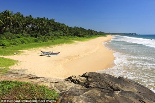 GALLE 33