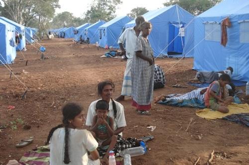 L 142a --manik Farm tents