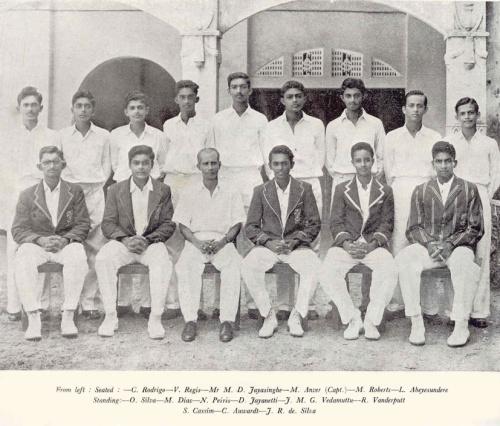 1956 Cricket